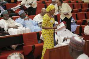 Tinubu is one of seven females in the 9th senate
