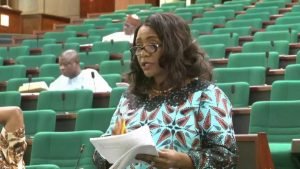 Apiafi graduated from the Reps to become one among seven female senators