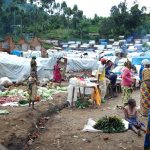 IDPs commission has to wait to defnde its 2021 budget